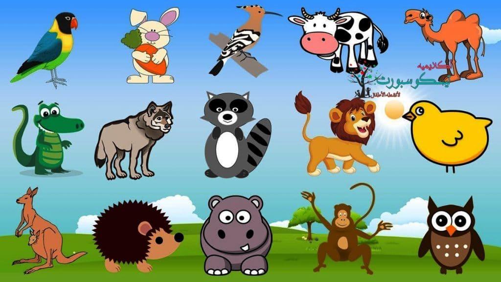 افكار مسابقات للاطفال للحيوانات