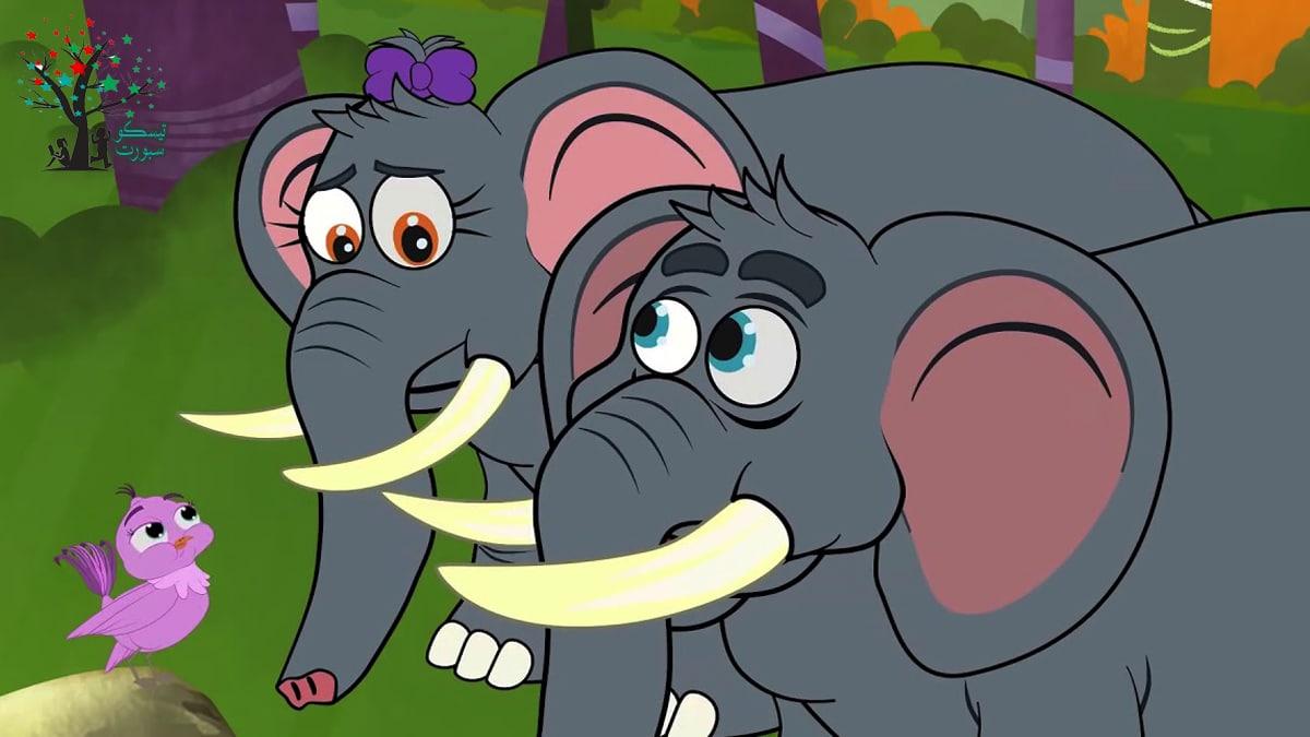الفيل والعصفور من قصص نوم